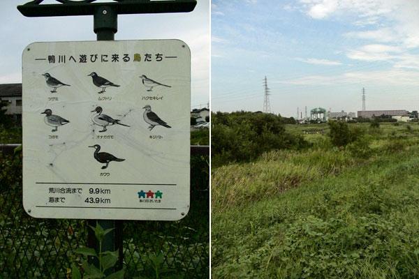 三橋総合公園・鴨川