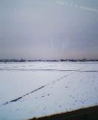 大雪の翌朝、田んぼは真っ白に