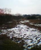 残雪の沼の風景