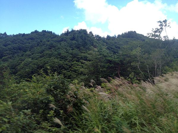 米沢から福島へ