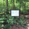 道に迷って川越の城址「大堀山館跡」を見つける
