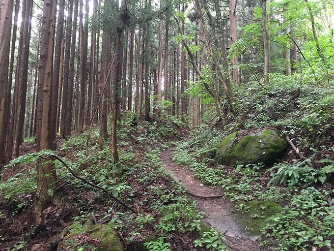 続石への山道(遠野)