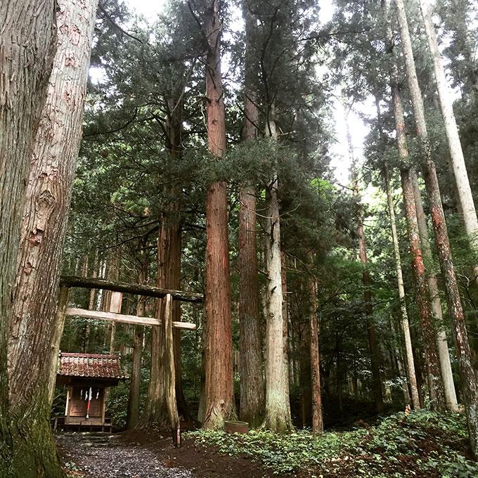諏訪神社(遠野)