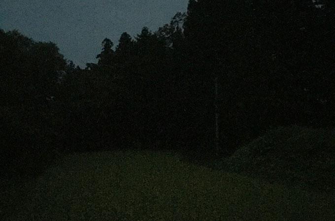 夜のカッパ淵(遠野)