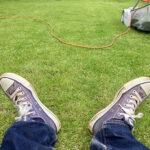 芝生の刈り止め、夏の草花の刈り取り