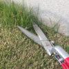 芝生バサミで家屋と縁石の「際」の刈り込み
