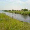 入間川の釣り人