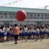 小学校運動会の大玉転がし