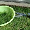 芝生、縁石の刈り込み