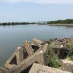 利根川・江戸川の分岐点