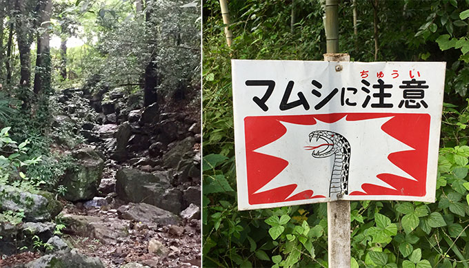 滝の城址公園(所沢)