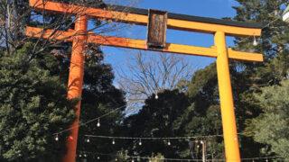 川越氷川神社 2020年初詣