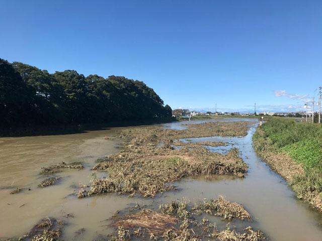 台風19号で増水した新河岸川