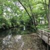 仙波河岸史跡公園(川越)