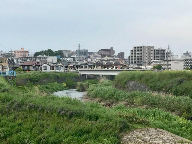 新扇橋から見た川越市街