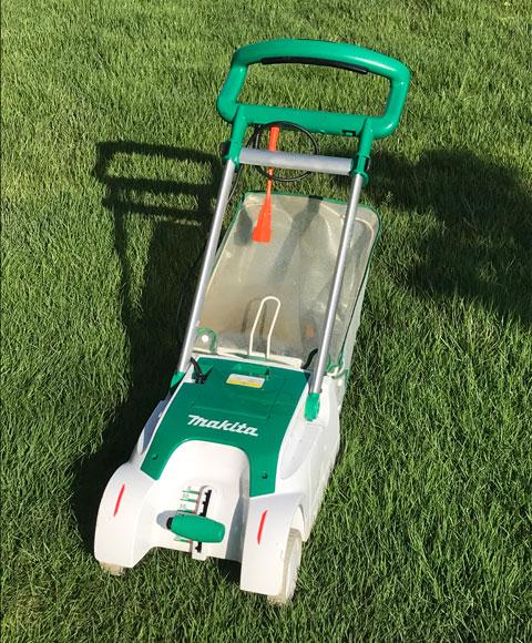 2020年初の芝刈り