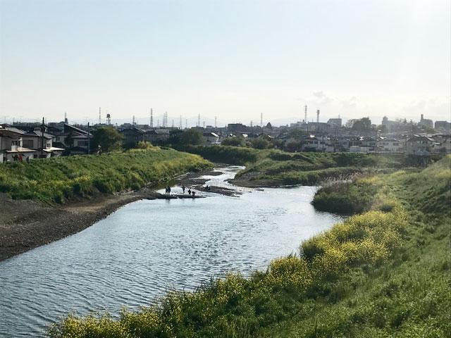 新河岸川・新扇橋周辺