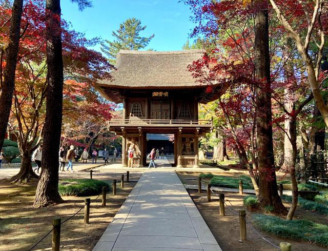 平林寺の山門