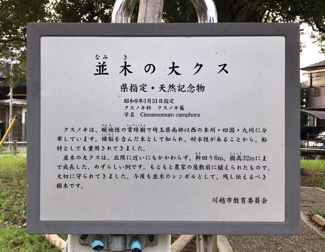 並木の大クス説明板