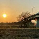 入間大橋のたもと(入間川)
