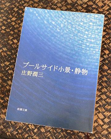 庄野潤三 小説『プールサイド小景』