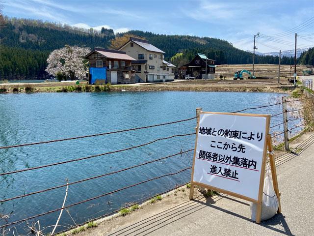 中子の桜(新潟県津南町)