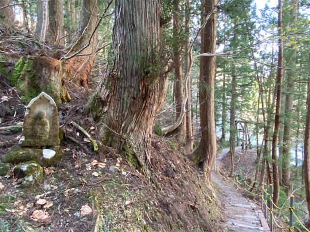 見倉橋への道(秋山郷)