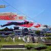 新河岸川養老橋の鯉のぼり